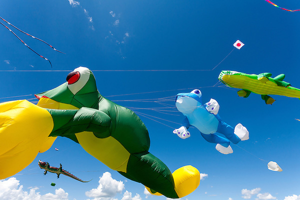 Aligator and frog kites of Bernhard Dingwerth from Kassel, Germany. Windscape Kite Festival, Swift Current, Saskatchewan. (Darrell Noakes)