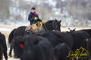 "Wyoming cowgirl, Skye Clark, working cows, Smoot Wyoming The cowboys of the west are under assault because many don't like to see their cows on public land. I have written a couple of articles articulating the problem. My photos are not to be used for anti public land ranching interests. (© Daryl Hunter's ""The Hole Picture""/Daryl L. Hunter)"