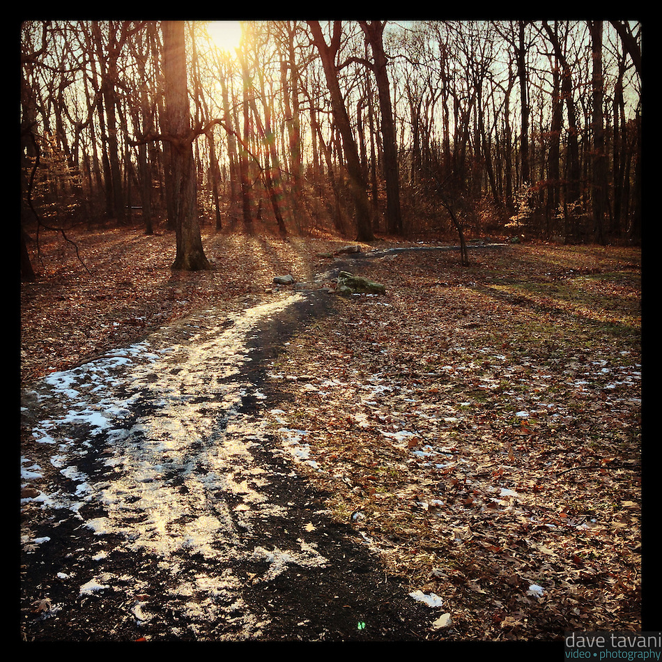 The sun shines on a snowy trail leading from Blue Bell Hill down into the Wissahickon Valley on January 2, 2013. (Dave Tavani)