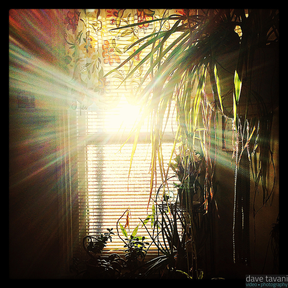 The sun comes up as seen through our upstairs hallway window on January 3, 2013. (Dave Tavani)