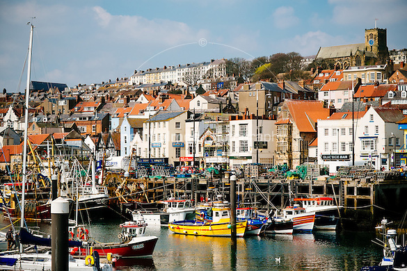Harbour, Scarbrough, North Yorkshire, United Kingdom, 24 April, 2015. Pictured: (Neil Holmes)