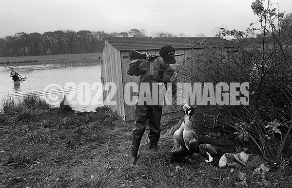Bill Lewis places a goose onto a pile of dead geese that they had shot as Ron Kobli fetches the decoys from the pond Saturday November 2, 1991 in Buckingham, Pennsylvania. (Photo by William Thomas Cain) (William Thomas Cain/Cain Images)