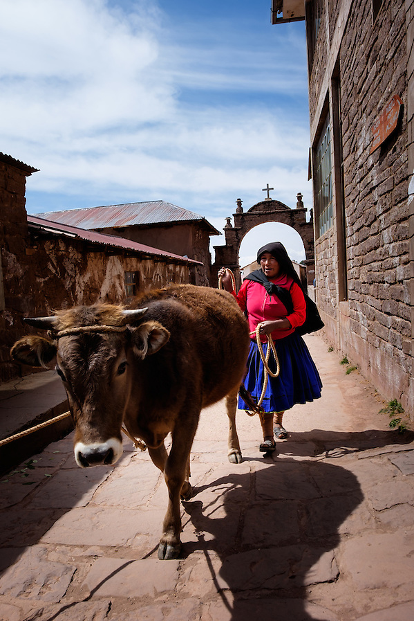 TAQUILE, PERU - CIRCA OCTOBER 2015: Woman with cattle at the Local market in the Island of Taquile in Lake Titicaca. (Daniel Korzeniewski)