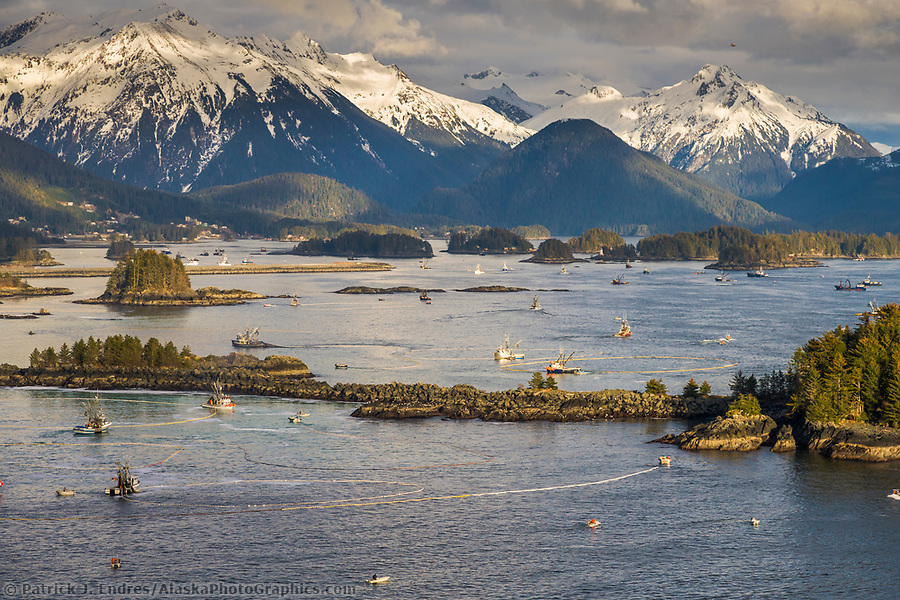 Commercial fishing photos: 2006 Herring Sac Roe commercial fishing fleet during the second opener in Sitka Sound. (Patrick J. Endres / AlaskaPhotoGraphics.com)