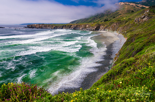Wildflowers above Sand Dollar Beach, Los Padres National Forest, Big Sur, California (© Russ Bishop/www.russbishop.com)