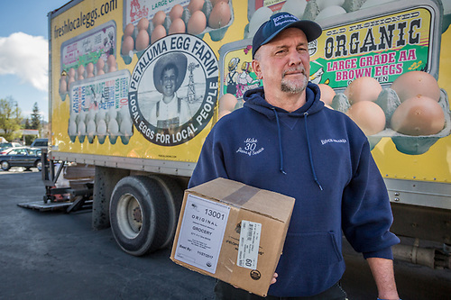 Mike Davis delivers eggs from Petalum Egg Farm to Sunshine Foods in Saint Helena, CA (Clark James Mishler)