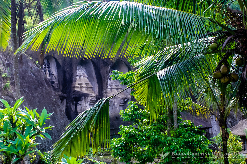 Bali, Gianyar, Gunung Kawi. An 11th century temple complex close to Tampaksiring. The western part of Gunung Kawi can be seen through the palm branches. (Photo Bjorn Grotting)
