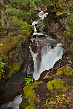 "Avalanche Creek Waterfall, Glacier National Park (Daryl Hunter's ""The Hole Picture"" � Daryl L. Hunter has been photographing the Yellowstone Region since 1987, when he packed up his view camera, Pentex 6X7, and his 35mm�s and headed to Jackson Hole Wyoming. Besides selling photography Daryl also publ)"
