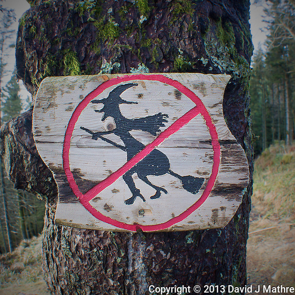 """No Fly Zone"" over Bergen? Sign on one of the trails on top of Mount Fløyen above Bergen Norway. Image taken with a Nikon 1 V2 and 10 mm f/2.8 lens (ISO 200, 10 mm, f/2.8, 1/60 sec). (David J. Mathre)"