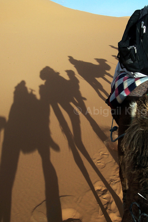 Shadows in the sand of the Sahara