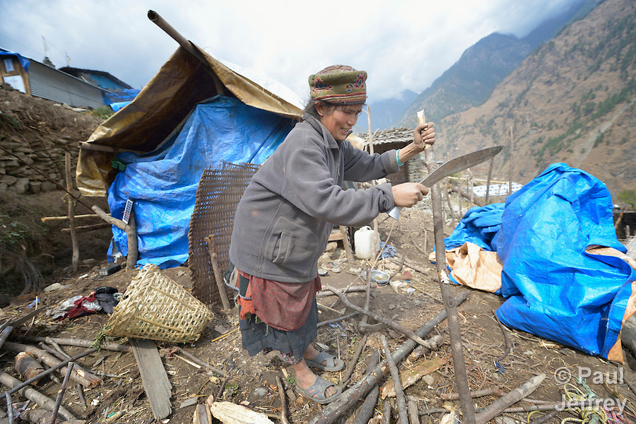 A Tamang woman cuts branches to make a temporary shelter in the village of Gatlang, in the Rasuwa District of Nepal near the country's border with Tibet. In the aftermath of the April 2015 earthquake that ravaged Nepal, the ACT Alliance helped people in this village with a variety of services, including blankets, shelter and livelihood assistance. (Paul Jeffrey)