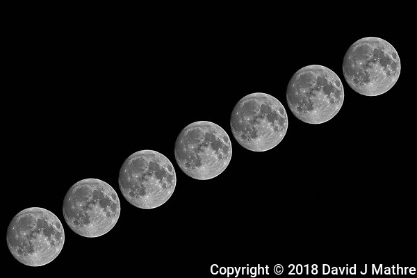 Seven Moons. Composite of images taken with a Nikon D5 camera and 600 mm f/4 VR telephoto lens (ISO 100, 600 mm, f/11, 1/250 sec). (DAVID J MATHRE)
