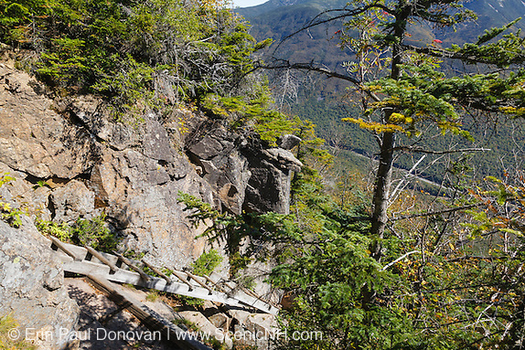 Franconia Notch State Park - Trail ladder along the Hi-Cannon Trail. This trail leads to the summit of Cannon Mountain in the White Mountains, New Hampshire USA.