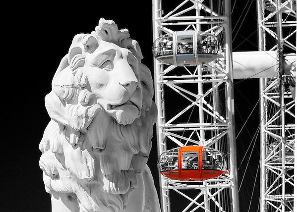 The South Bank Lion stands at the southern end of Westminster Bridge. Sculptured by William Frederick Woodington in 1837, the Lion originally stood outside Lion Brewery on the Southbank until 1924. The Lion is pictured in front of the London Eye. (unknown)
