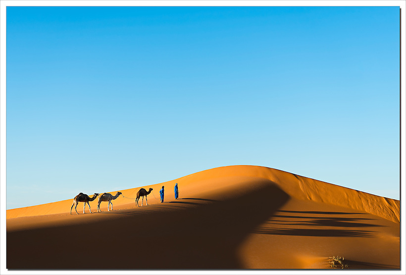 Nomads with dromedaries in the Sahara desert of Morocco. (Rosa Frei)