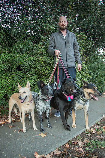 "Television creative director Brent Redford is out for an evening walk  in Martinez, CA, with his dogs Bob, Jody, Daisy and Bobo.  ""I grew up Mormon...my three brothers have nine kids...I have four dogs."" (Clark James Mishler)"