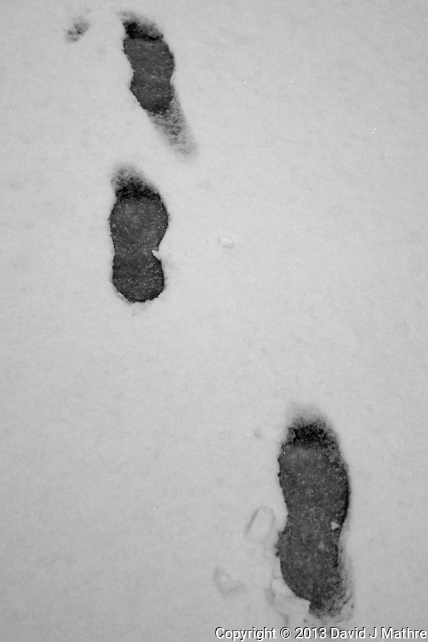 Footsteps in an Early Snowfall (Williams, Arizona). Gone to See America 2013. Image taken with a Leica X2 camera (ISO 400, 24 mm, f/2.8, 1/500 sec). (David J Mathre)