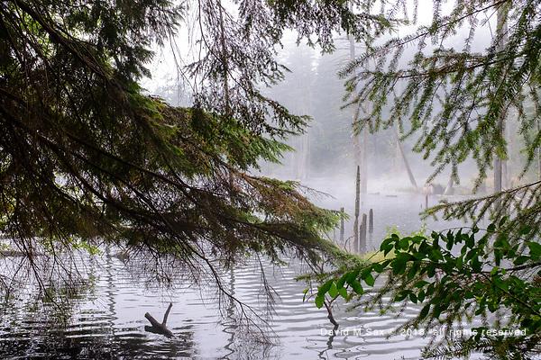 8.25.18 - Lake View.... (DAVID M SAX)