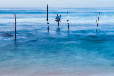 Stilt fisherman at Midigama near Weligama, South Coast, Sri Lanka, Asia. This is a photo of a stilt fisherman at Midigama near Weligama on the South Coast of Sri Lanka, Asia. This stilt fisherman is continuing a tradition that goes back centuries. The idea is that by standing on the stilts they are able to fish wishout disturbing the shoals of small fish that surround them.
