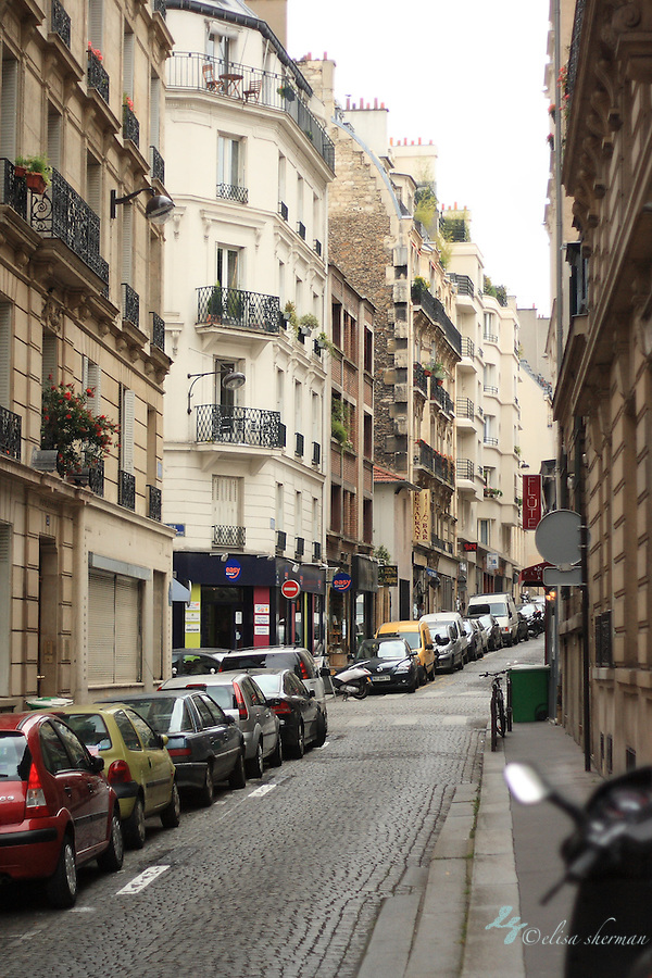Paris Streets ~ France (Elisa Sherman)