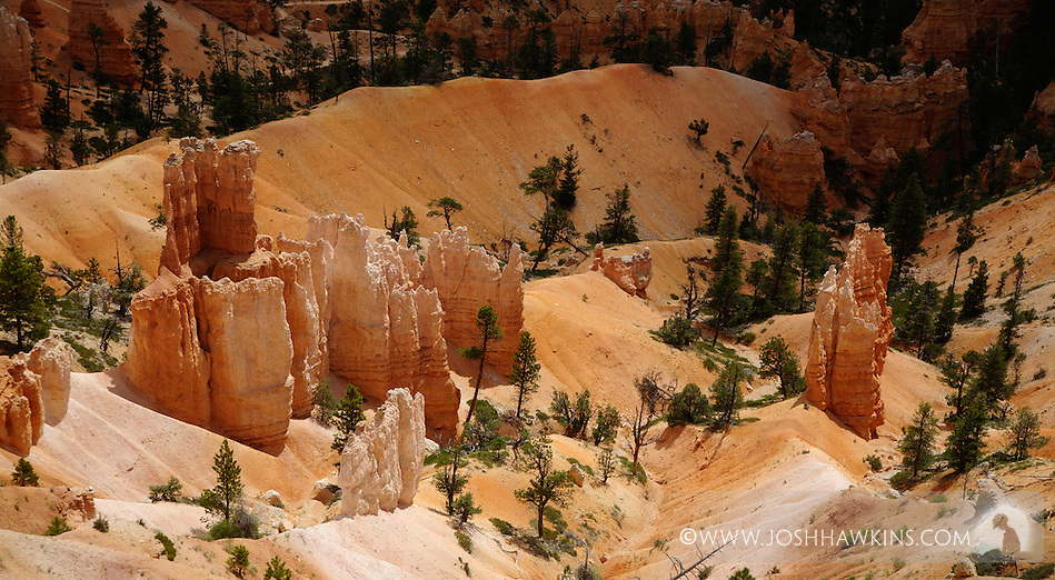 Bryce Canyon National Park (Josh Hawkins)