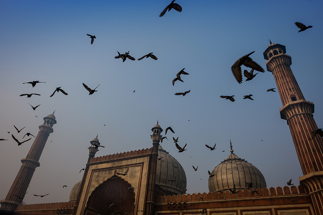 NEW DELHI, INDIA - CIRCA OCTOBER 2016: Jama Masjid Mosque in Delhi. Constructed in red sandstone and white marble the mosque is a popular tourist attraction in Delhi. (Daniel Korzeniewski)