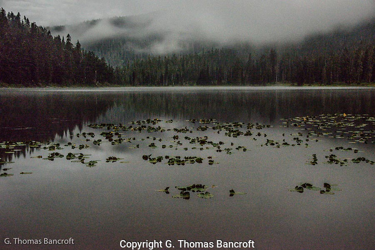At 3AM, the moon was glowing through clouds giving a eerie feel to the woods.  I walked down to Lake Janus to find mist rising from the lake and clouds drifting by the forest.  A great-horned owl called softly from the forest on the right.  The lake was sublime and I watched for a long time before retuning to my tent. (G. Thomas Bancroft)