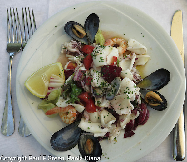 Italy, Food, Travel, Architecture, Art, seafood salad (Paul Evan Green)
