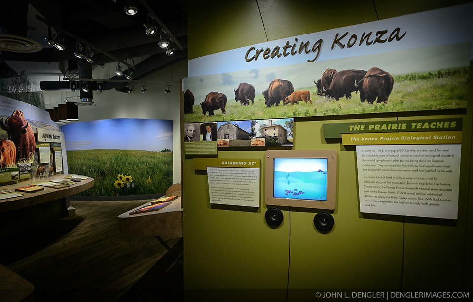 The $24.4 million Flint Hills Discovery Center, located in Manhattan, Kansas celebrates the history, culture, and heritage of the Flint Hills and tallgrass prairie. Through interactive exhibits Flint Hills Discovery Center visitors can explore the science and cultural history of the last stand of tallgrass prairie in North America ? one of the world?s most endangered ecosystems. The Flint Hills Discovery Center was designed by the museum architectural firm Vern Johnson Inc. with interpretive design and planning by Hilferty and Associates. The 34,900 square foot science and history learning center features permanent interactive exhibits, temporary exhibits, and areas for community programs and outreach activities. Attractions of the Flint Hills Discovery Center include: a 15-minute ?immersive experience? film which has special effects such as fog, mist and wind which appear in the theater as the high definition film is shown on a large panoramic screen; an ?underground forest? depicting the long roots of prairie plants including the 7-foot roots of bluestem prairie grass; explanations of importance of fire to the Flint Hills tallgrass prairie; and exhibits about the people and cultural history of the Flint Hills. (John L. Dengler)