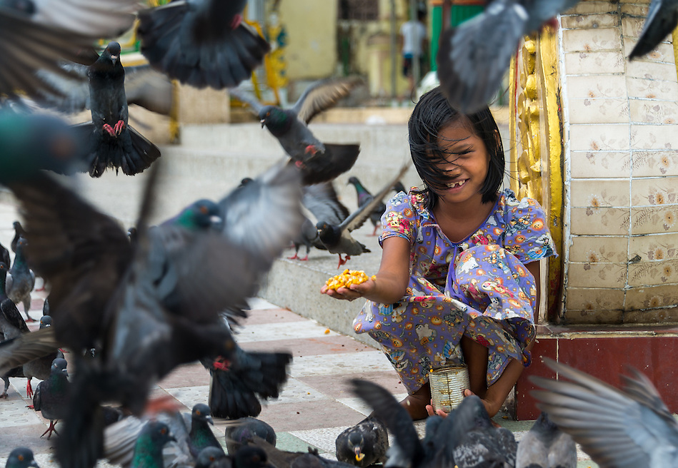 YANGON, MYANMAR - CIRCA DECEMBER 2013: Happy girl playing with pigeons in the streets of Yangon. (Daniel Korzeniewski)
