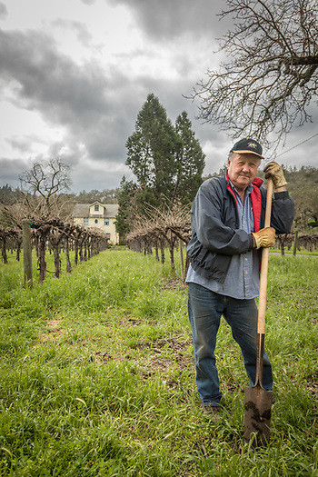 """We've got 3.5 acres...just a small porttion of the original Cyrus ranch. We grow cabernet grapes and serve our own wine."" -Bear Flag Inn owner Denise McNay, Calistoga. (Clark James Mishler)"