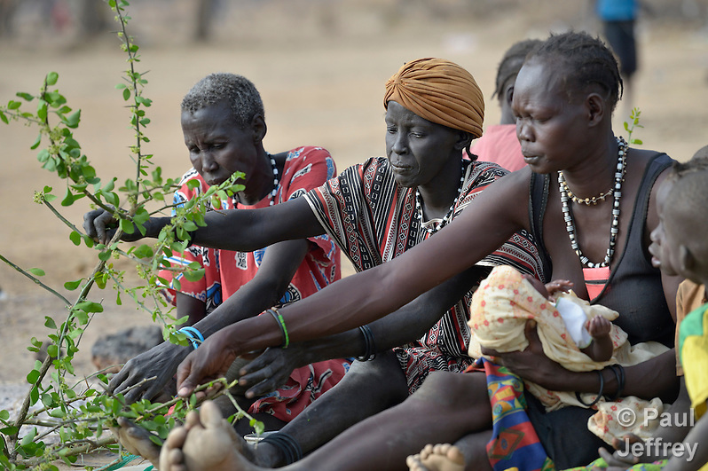 "Hungry women eat leaves from the lalob tree in a camp for internally displaced people in Manangui, South Sudan. The tree (Balanites aegyptiaca) is a common ""hunger food"" in the region. (Paul Jeffrey)"