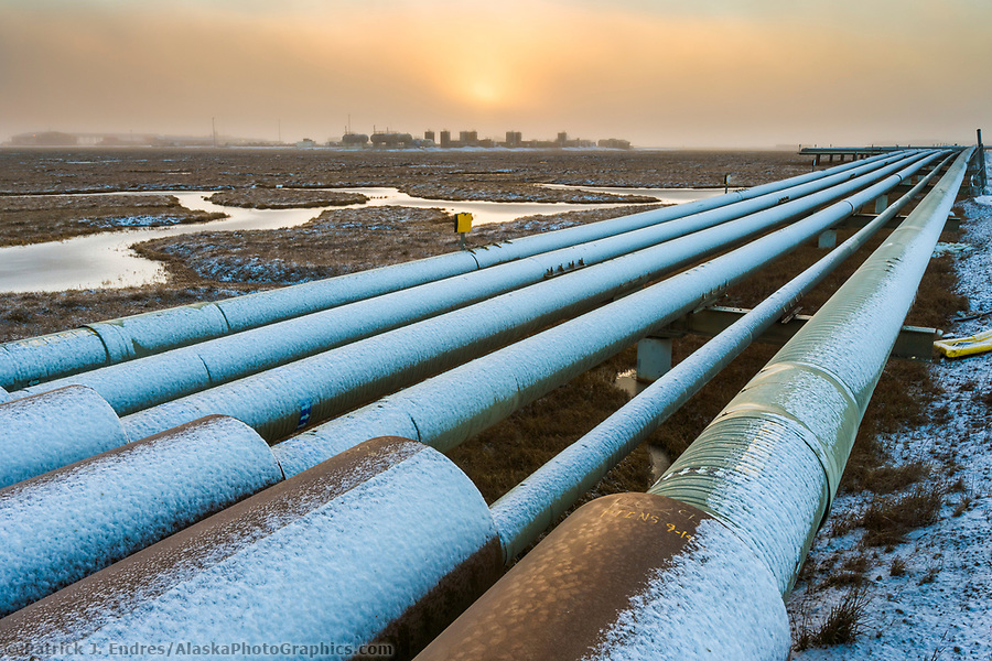 Pipe array in the Prudhoe Bay oil field, Arctic Coastal Plain, Alaska. (Patrick J. Endres / AlaskaPhotoGraphics.com)