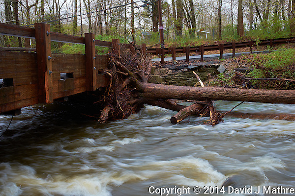 A Tree Caught By the Single Lane Rock Brook Bridge Last Night During the Flooding. Spring Nature in New Jersey. Image taken with a Fuji X-T1 camera and 23 mm f/1.4 lens (ISO 200, 23 mm, f/16, 1/9 sec). (David J Mathre)