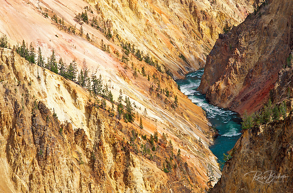 The Yellowstone River and canyon from Grandview Point, Yellowstone National Park, Wyoming (Russ Bishop/Russ Bishop Photography)