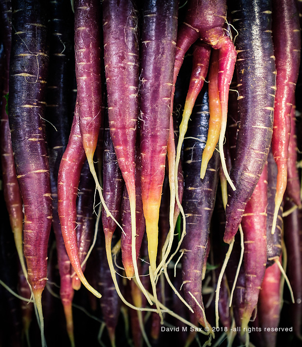 11.14.18 - Carrots of a Different Sort.... (© David M Sax 2018 - all rights reserved)