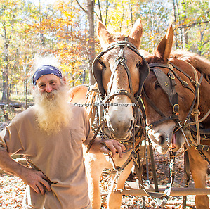 Robert Runyon stands with his mules Jasper and Jenny at their home in Sugar Tree Hollow in Winslow, Arkansas, for Out Here Magazine. Photo by Beth Hall (Beth Hall)