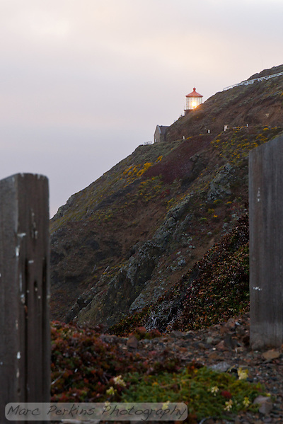 Point Sur Light Station's lighthouse peeking over the top of the hillside it's built on.  This is seen from the road that climbs the hill to reach the lighthouse.  The day was incredibly windy, and the only barrier on the steep hillside is the vertical wooden beams you can see in the picture.  The hillside was covered in blooms, making it beautiful. (Marc C. Perkins)