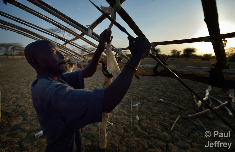 Akuei Lual fastens branches together to make a roof for his house in Abyei, a contested region along the border between Sudan and South Sudan. Under a 2005 peace agreement, the region was supposed to have a referendum to decide which country it would join, but the two countries have yet to agree on who can vote. In 2011, militias aligned with Khartoum drove out most of the Dinka Ngok residents, pushing them across a river into the town of Agok. Yet more than 40,000 Dinka Ngok have since returned with support from Caritas South Sudan, which has drilled wells, built houses, opened clinics and provided seeds and tools for the returnees. (Paul Jeffrey)