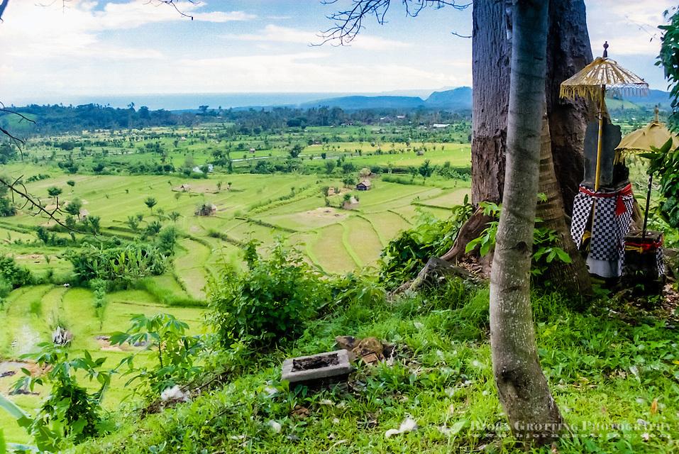 Bali, Karangasem, Tirta Gangga. A beautiful view north of Tirta Gangga. Green, fertile ricefields and in the background a blue sea. (Photo Bjorn Grotting)