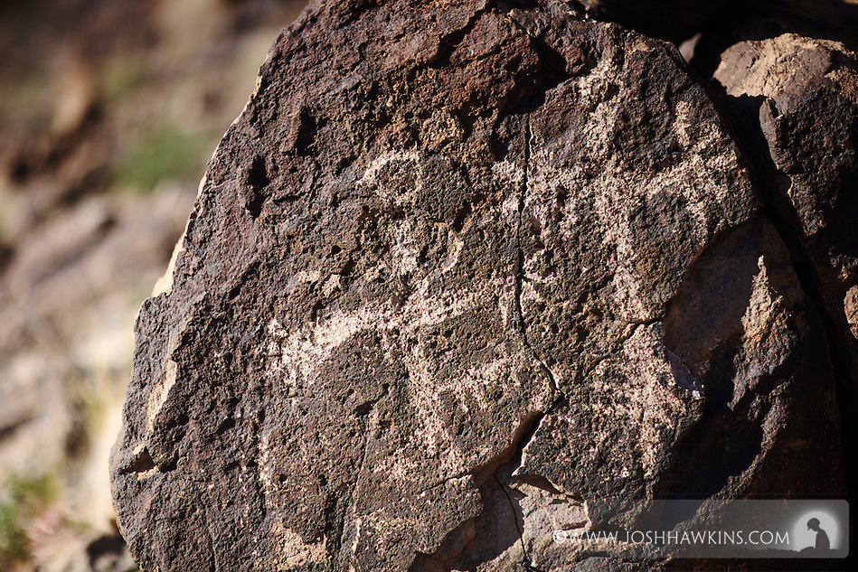 Petroglyphs in Sloan Canyon in the Sloan Canyon National Conservation Area which is part of the North McCullough Wilderness area outside Las Vegas, NV (Josh Hawkins)