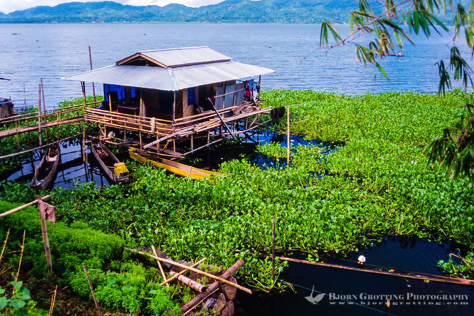 Indonesia, Sulawesi, Tondano. Lake Tondano is a large lake along the side of an ancient volcanic caldera. This fishermans house is built on stilts above the water. (Photo Bjorn Grotting)