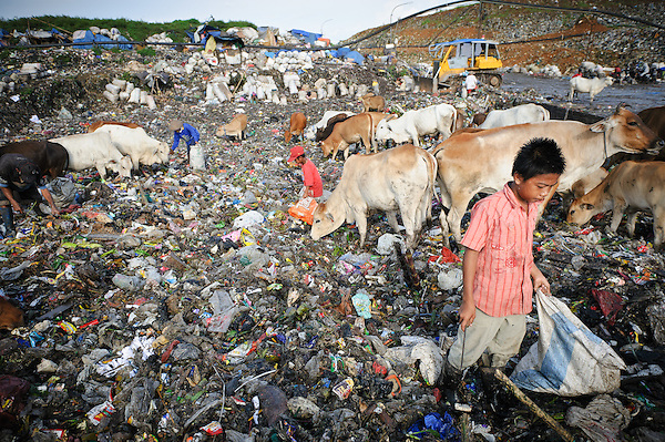 Taupik, 14, searching for plastic and metal at the active section of the 'Trash mountain', Makassar, Sulawesi, Indonesia. (Matthew Oldfield)