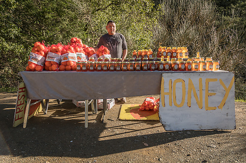 """I've beem doing this for three years...business is good."" -Clear Lake resident Juan Hernandez mans his fruit and honey stand near the corners of Petrified Forest and Porter Creek Roads. (Clark James Mishler)"
