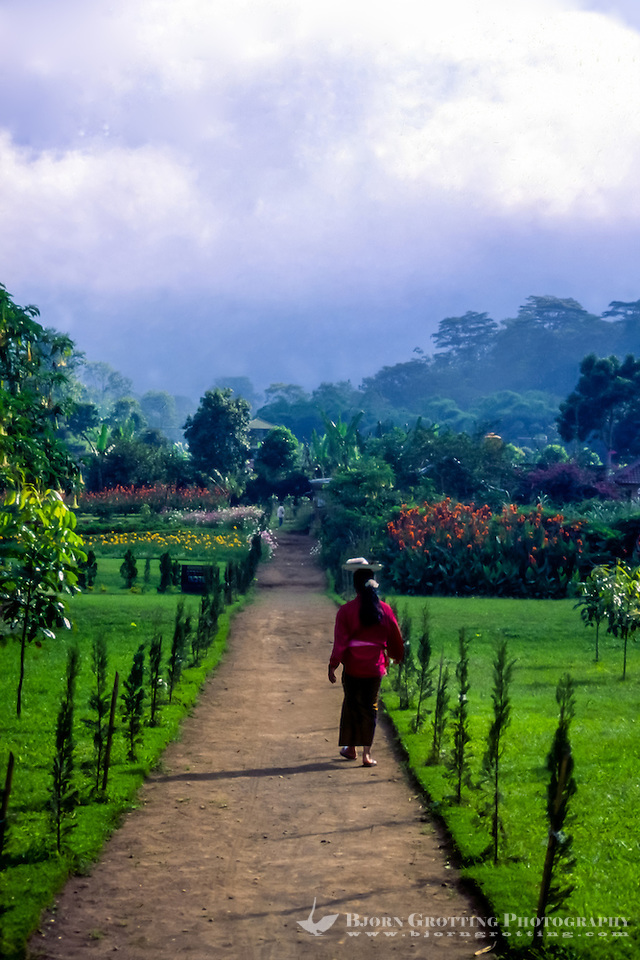 Bali, Tabanan, Bratan. There is a nice garden at Ulun Danu, a very peaceful and tranquil place. (Bjorn Grotting)