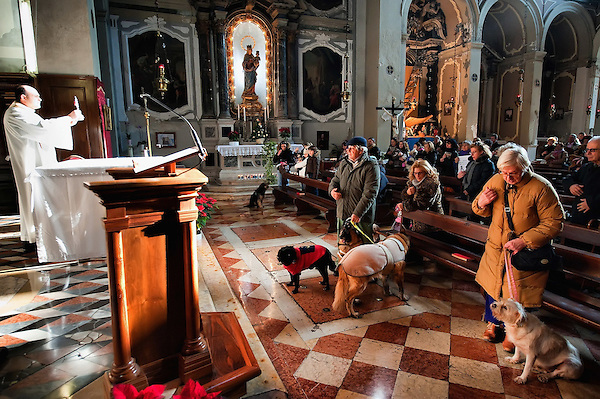 VENICE, ITALY - JANUARY 15:  Don Filippo Chiafoni Chaplain of the Church of S Francesco blesses the congregation and their animals during a special service held on January 15, 2012 in Venice, Italy. The blessing of animals and pets is a very ancient tradition dating back from San Francis of Assisi. (Marco Secchi/Getty Images)