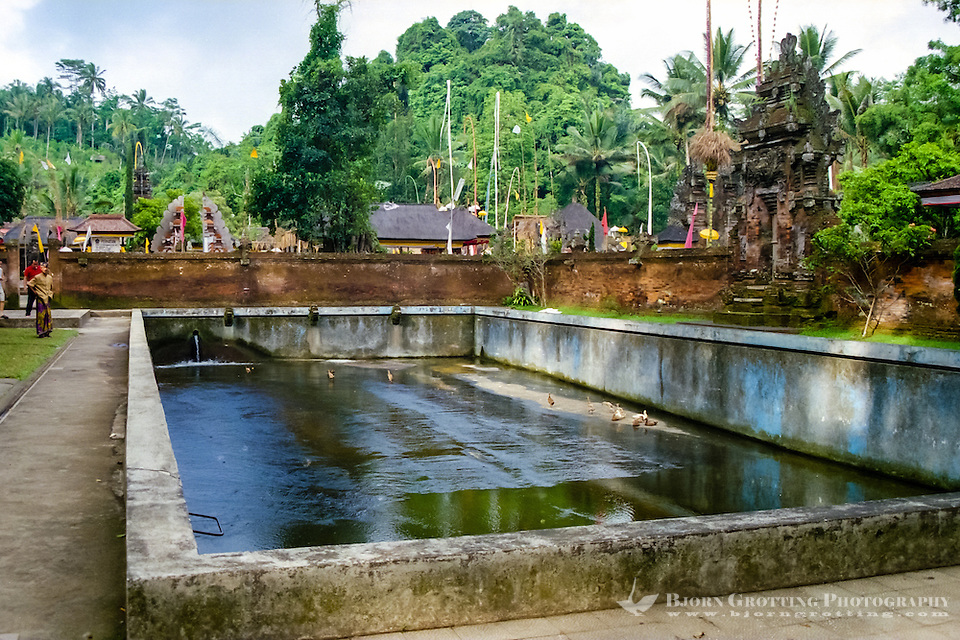 Bali, Gianyar, Tirtha Empul. Pura Tirtha Empul temple close to Tampaksiring. A large pool close to the entrance of the temple. (Photo Bjorn Grotting)