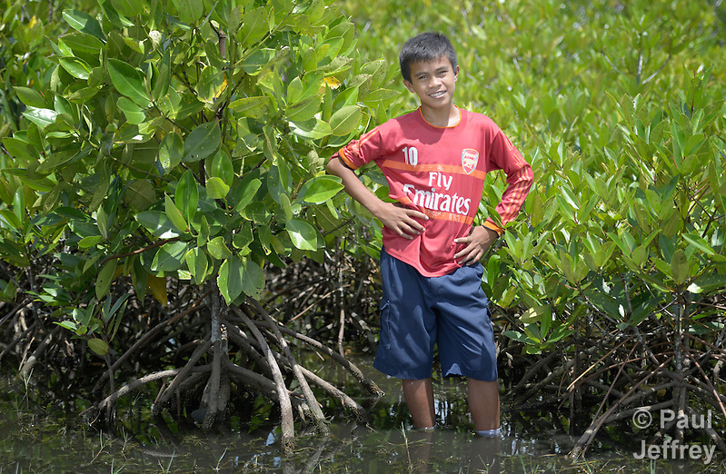 Jefrin Zendrato, 13, poses among mangroves he helped plant as a small boy in 2007 near his village of Moawo on the Indonesian island of Nias. The mangrove planting was part of assistance provided to the village by YEU, a member of the ACT Alliance, following a devastating 2004 tsunami and 2005 earthquake. Residents say the mangroves have helped to protect the shoreline from erosion and attracted crabs and small fish which have helped to revitalize their fishing industry.  (Parental consent obtained.) (Paul Jeffrey)