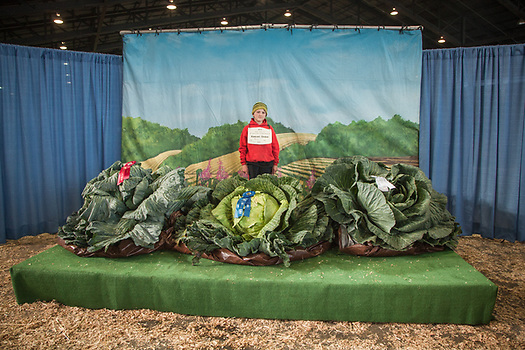 Keevan Dinkel and his first place 92.3 lb. cabbage at the annual Cabbage Weigh-off at The Alaska State Fair, Palmer, Alaska  zucfam@mtaonline.net (Clark James Mishler)