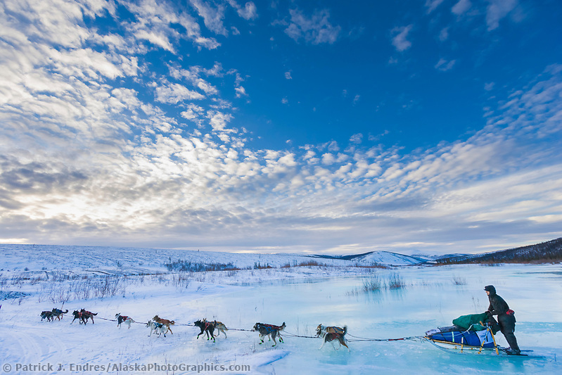 Musher Richie Beattie crosses overflow on Ptarmigan creek near mile 101 checkpoint during the 1000 mile Yukon Quest sled dog race 2006, between Fairbanks, Alaska and Whitehorse, Yukon. Dubbed the toughest dogsled race in the world. (Patrick J. Endres / AlaskaPhotoGraphics.com)
